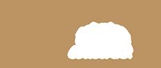 OCV Tehnica - Lemn stratificat & Terase de lemn